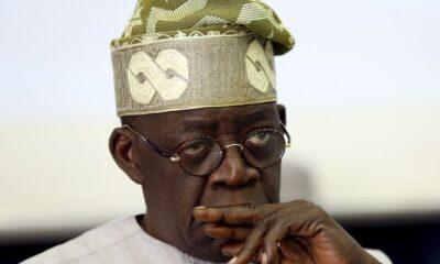 EDO DECIDES : Nigerians Tear Bola Ahmed Tinubu Apart