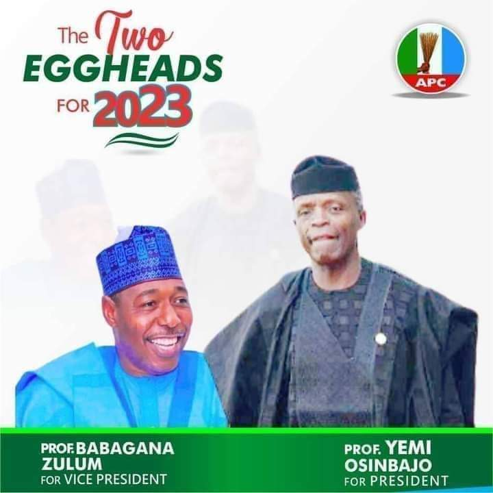 Campaign Poster Of Osinbajo And Gov. Zulum As Running Mates Emerge