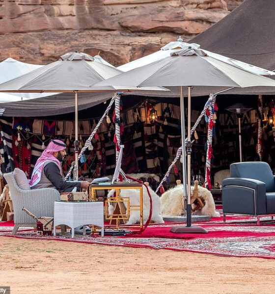 PHOTOS : Saudi Prince Addresses World Economic From The Desert